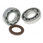 BEARING  SET - SUZUKI 125-150-200-250-400