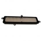 Air filter - SUZUKI BURGMANN 125 - 200  07x10